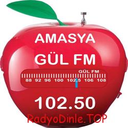 Amasya Radyo Gül