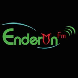 Kayseri Enderun FM
